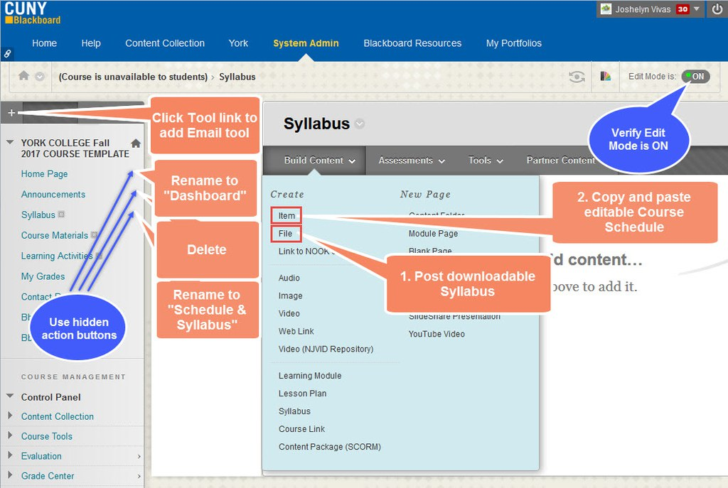 Add, remove, or modify course menu items, post syllabus and other course materials.